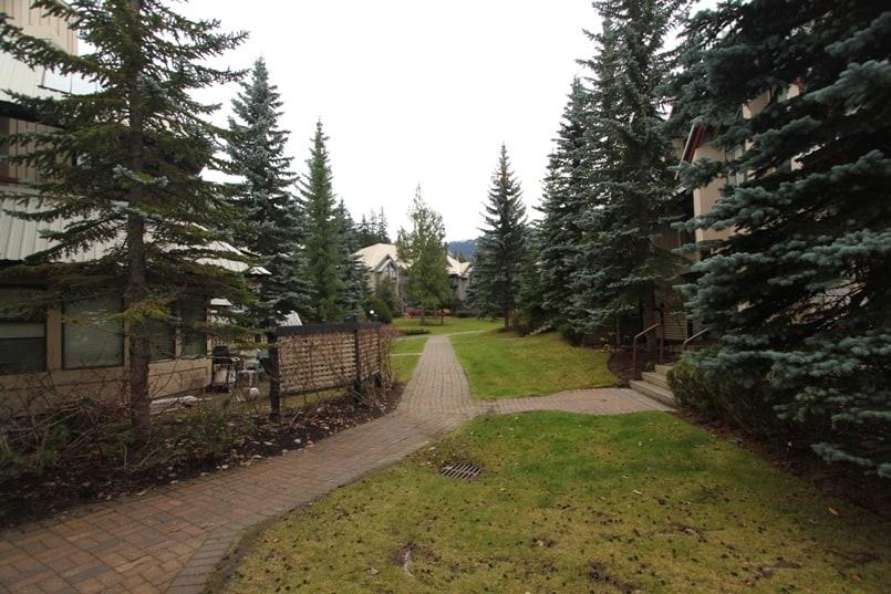 Snowberry-walkway